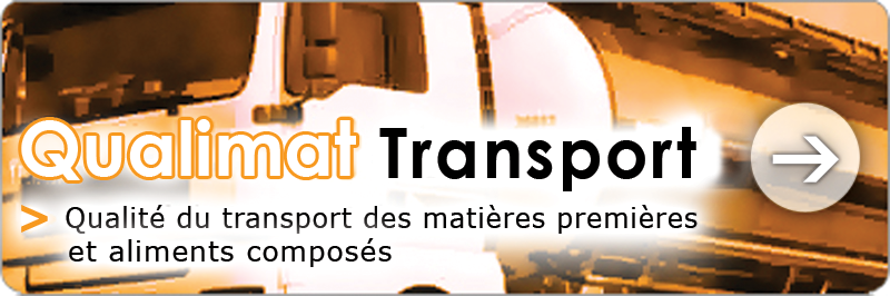 bt_q_Transport-web
